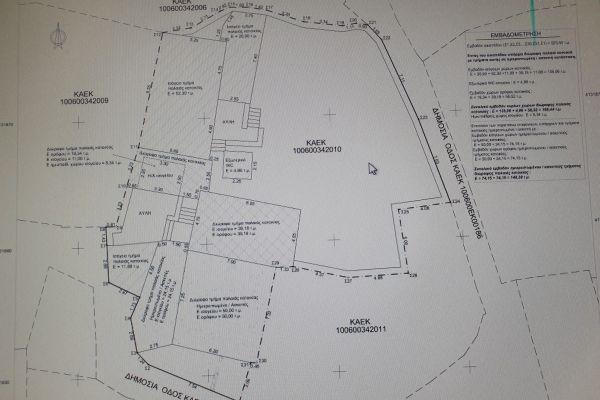 map4816F958-0AA1-17F7-1399-8B8398286452.jpg